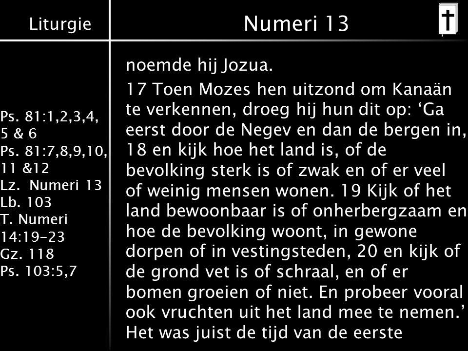 Liturgie Ps. 81:1,2,3,4, 5 & 6 Ps. 81:7,8,9,10, 11 &12 Lz. Numeri 13 Lb. 103 T. Numeri 14:19-23 Gz. 118 Ps. 103:5,7 noemde hij Jozua. 17 Toen Mozes he