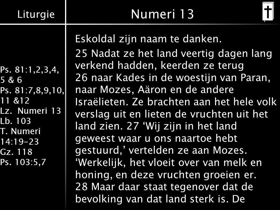 Liturgie Ps. 81:1,2,3,4, 5 & 6 Ps. 81:7,8,9,10, 11 &12 Lz. Numeri 13 Lb. 103 T. Numeri 14:19-23 Gz. 118 Ps. 103:5,7 Eskoldal zijn naam te danken. 25 N