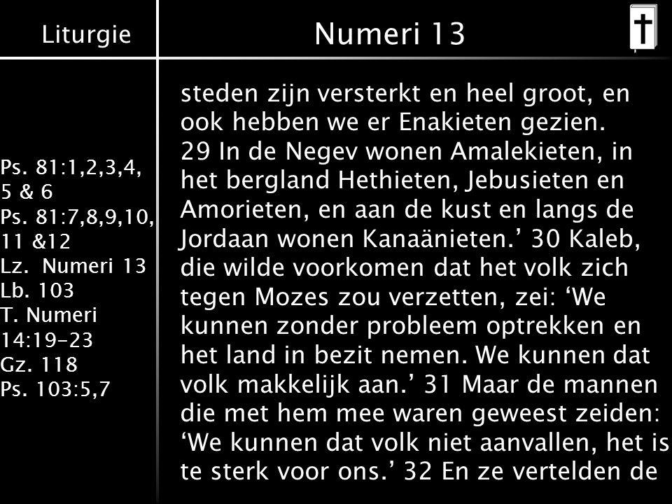Liturgie Ps. 81:1,2,3,4, 5 & 6 Ps. 81:7,8,9,10, 11 &12 Lz. Numeri 13 Lb. 103 T. Numeri 14:19-23 Gz. 118 Ps. 103:5,7 steden zijn versterkt en heel groo