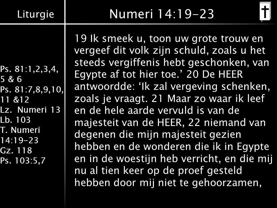 Liturgie Ps. 81:1,2,3,4, 5 & 6 Ps. 81:7,8,9,10, 11 &12 Lz. Numeri 13 Lb. 103 T. Numeri 14:19-23 Gz. 118 Ps. 103:5,7 Numeri 14:19-23 19 Ik smeek u, too