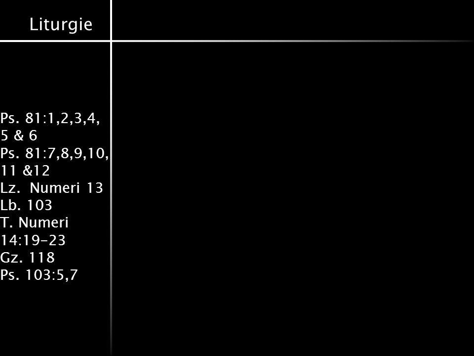 Liturgie Ps. 81:1,2,3,4, 5 & 6 Ps. 81:7,8,9,10, 11 &12 Lz. Numeri 13 Lb. 103 T. Numeri 14:19-23 Gz. 118 Ps. 103:5,7