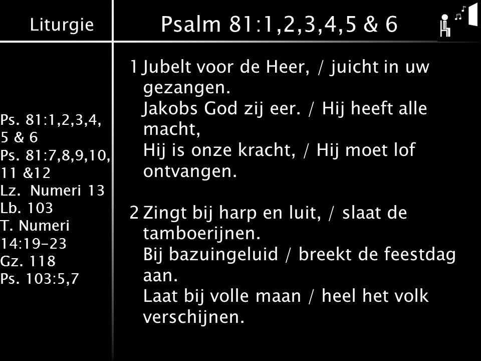 Liturgie Ps. 81:1,2,3,4, 5 & 6 Ps. 81:7,8,9,10, 11 &12 Lz. Numeri 13 Lb. 103 T. Numeri 14:19-23 Gz. 118 Ps. 103:5,7 Psalm 81:1,2,3,4,5 & 6 1Jubelt voo