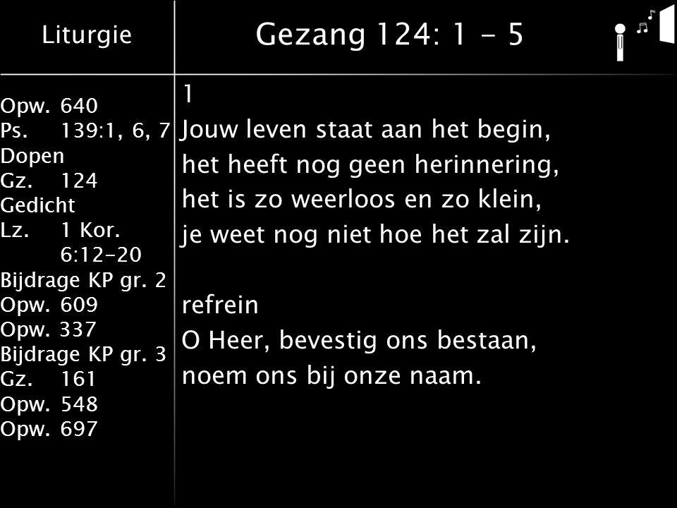 Liturgie Opw.640 Ps.139:1, 6, 7 Dopen Gz.124 Gedicht Lz. 1 Kor. 6:12-20 Bijdrage KP gr. 2 Opw.609 Opw. 337 Bijdrage KP gr. 3 Gz.161 Opw.548 Opw.697 1
