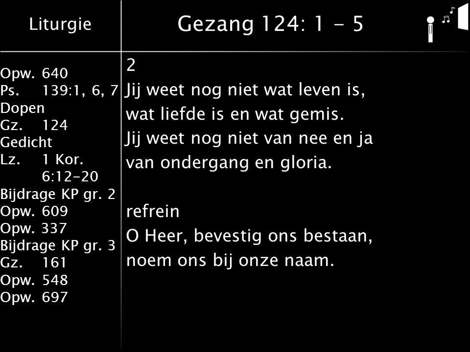 Liturgie Opw.640 Ps.139:1, 6, 7 Dopen Gz.124 Gedicht Lz. 1 Kor. 6:12-20 Bijdrage KP gr. 2 Opw.609 Opw. 337 Bijdrage KP gr. 3 Gz.161 Opw.548 Opw.697 2