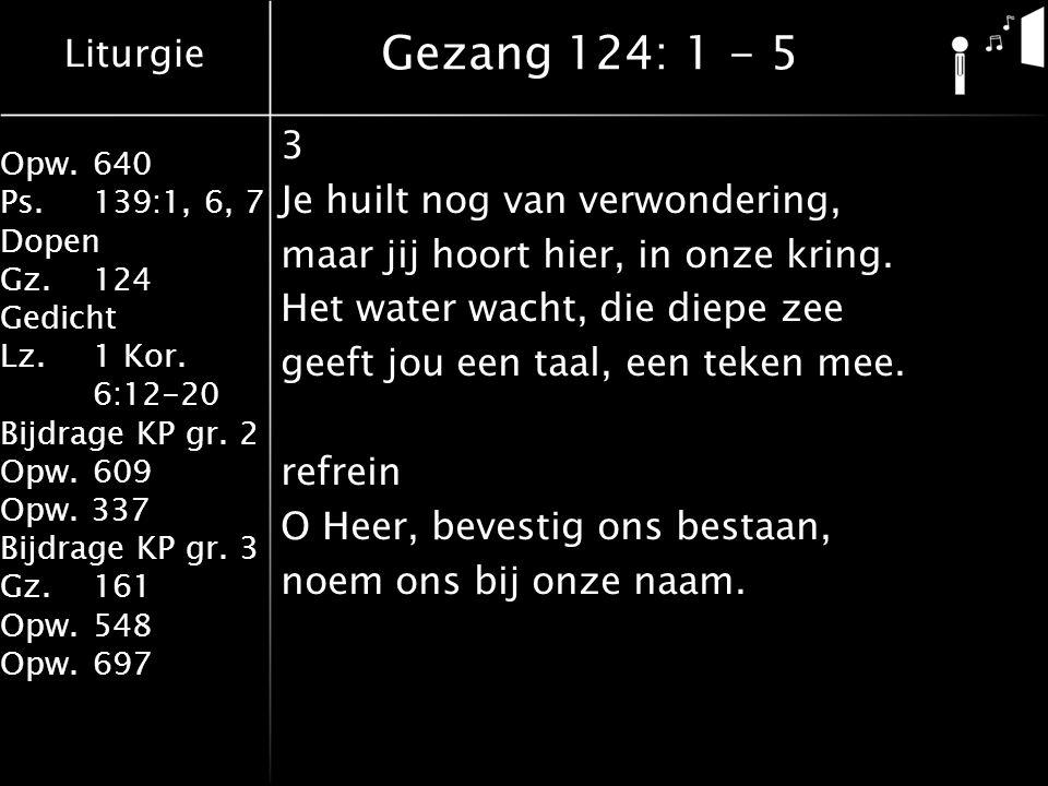 Liturgie Opw.640 Ps.139:1, 6, 7 Dopen Gz.124 Gedicht Lz. 1 Kor. 6:12-20 Bijdrage KP gr. 2 Opw.609 Opw. 337 Bijdrage KP gr. 3 Gz.161 Opw.548 Opw.697 Ge