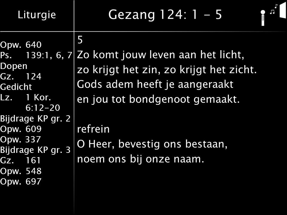 Liturgie Opw.640 Ps.139:1, 6, 7 Dopen Gz.124 Gedicht Lz. 1 Kor. 6:12-20 Bijdrage KP gr. 2 Opw.609 Opw. 337 Bijdrage KP gr. 3 Gz.161 Opw.548 Opw.697 5