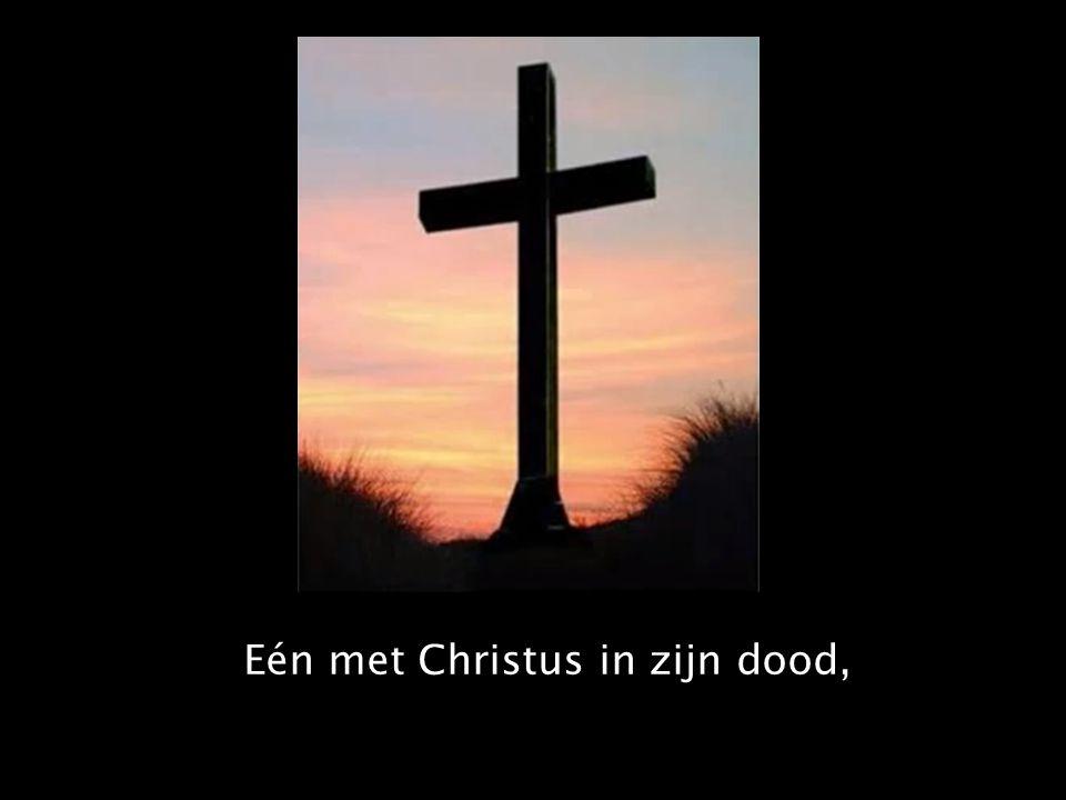 Eén met Christus in zijn dood,