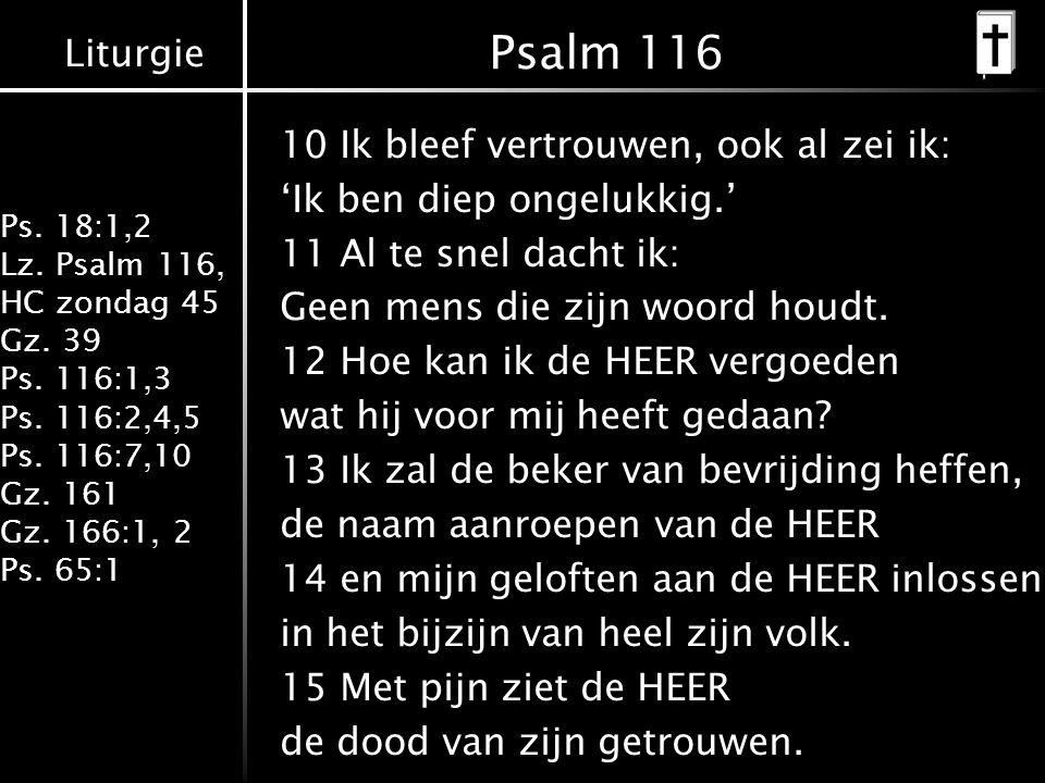 Liturgie Ps. 18:1,2 Lz. Psalm 116, HC zondag 45 Gz. 39 Ps. 116:1,3 Ps. 116:2,4,5 Ps. 116:7,10 Gz. 161 Gz. 166:1, 2 Ps. 65:1 Psalm 116 10 Ik bleef vert