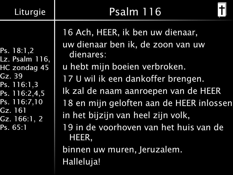 Liturgie Ps. 18:1,2 Lz. Psalm 116, HC zondag 45 Gz. 39 Ps. 116:1,3 Ps. 116:2,4,5 Ps. 116:7,10 Gz. 161 Gz. 166:1, 2 Ps. 65:1 Psalm 116 16 Ach, HEER, ik
