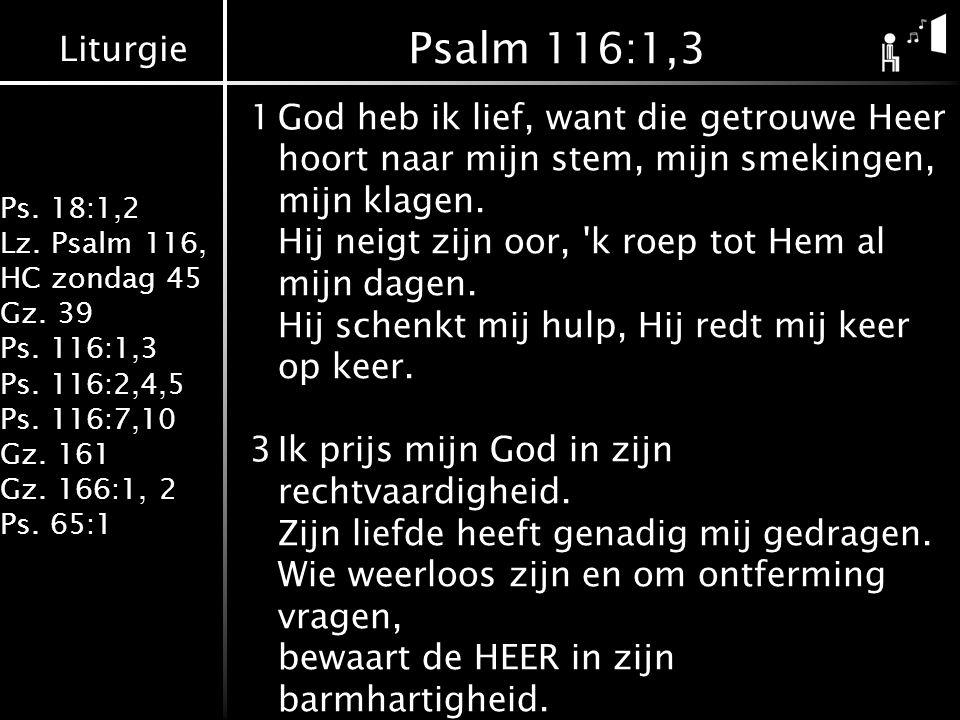 Liturgie Ps. 18:1,2 Lz. Psalm 116, HC zondag 45 Gz. 39 Ps. 116:1,3 Ps. 116:2,4,5 Ps. 116:7,10 Gz. 161 Gz. 166:1, 2 Ps. 65:1 Psalm 116:1,3 1God heb ik