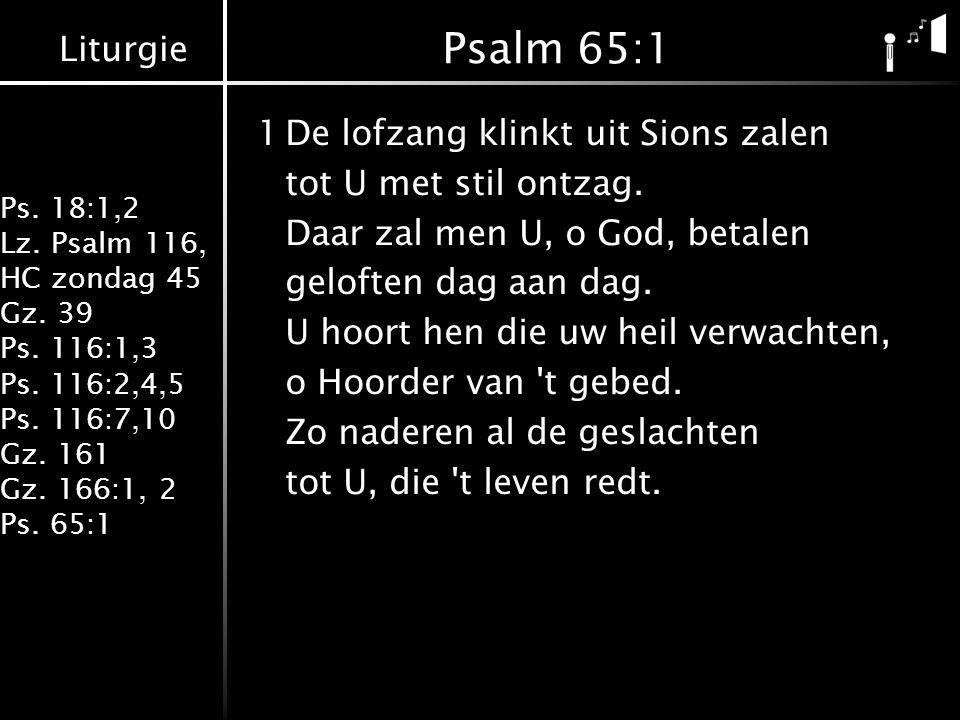 Liturgie Ps. 18:1,2 Lz. Psalm 116, HC zondag 45 Gz. 39 Ps. 116:1,3 Ps. 116:2,4,5 Ps. 116:7,10 Gz. 161 Gz. 166:1, 2 Ps. 65:1 Psalm 65:1 1De lofzang kli