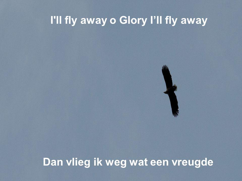 I ll fly away o Glory I'll fly away Dan vlieg ik weg wat een vreugde