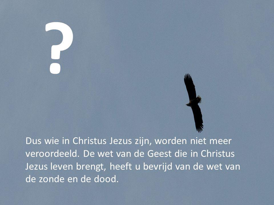 Dus wie in Christus Jezus zijn, worden niet meer veroordeeld.
