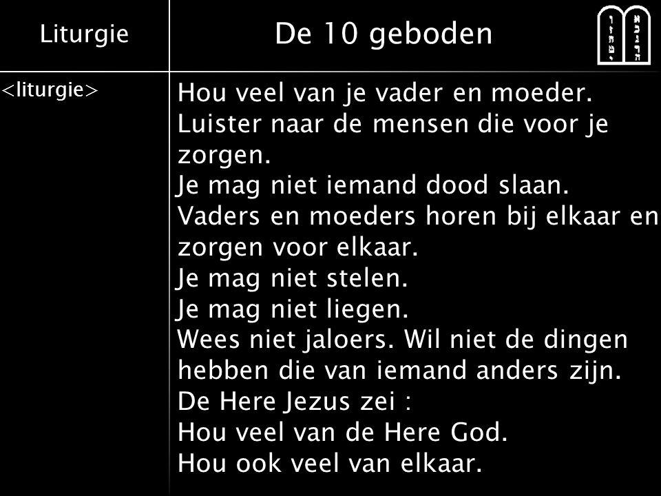 Liturgie De 10 geboden Hou veel van je vader en moeder. Luister naar de mensen die voor je zorgen. Je mag niet iemand dood slaan. Vaders en moeders ho