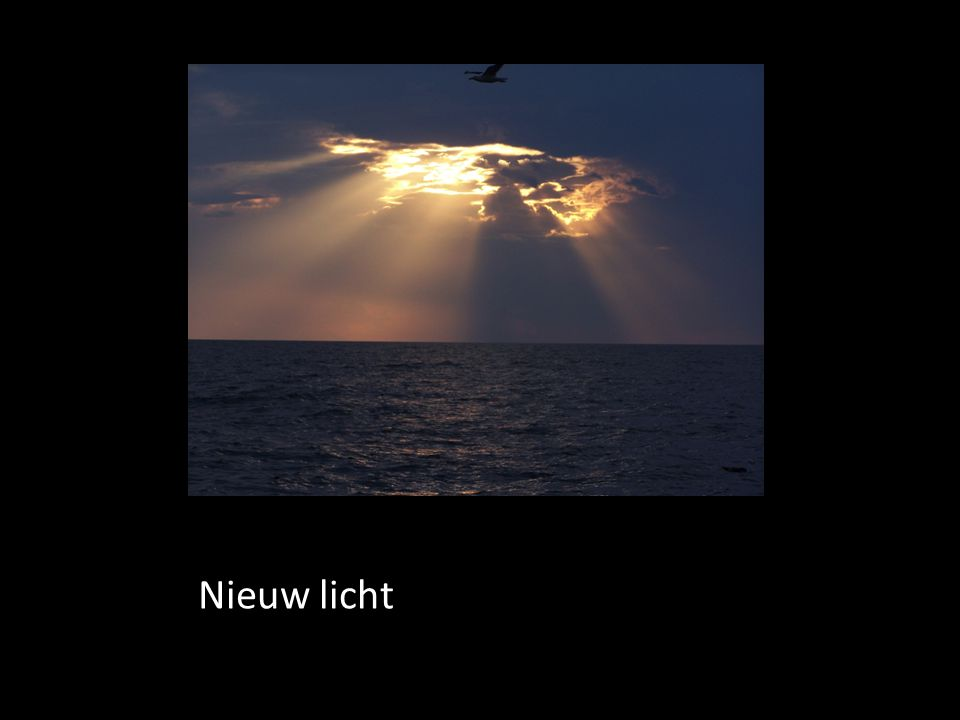 Nieuw licht