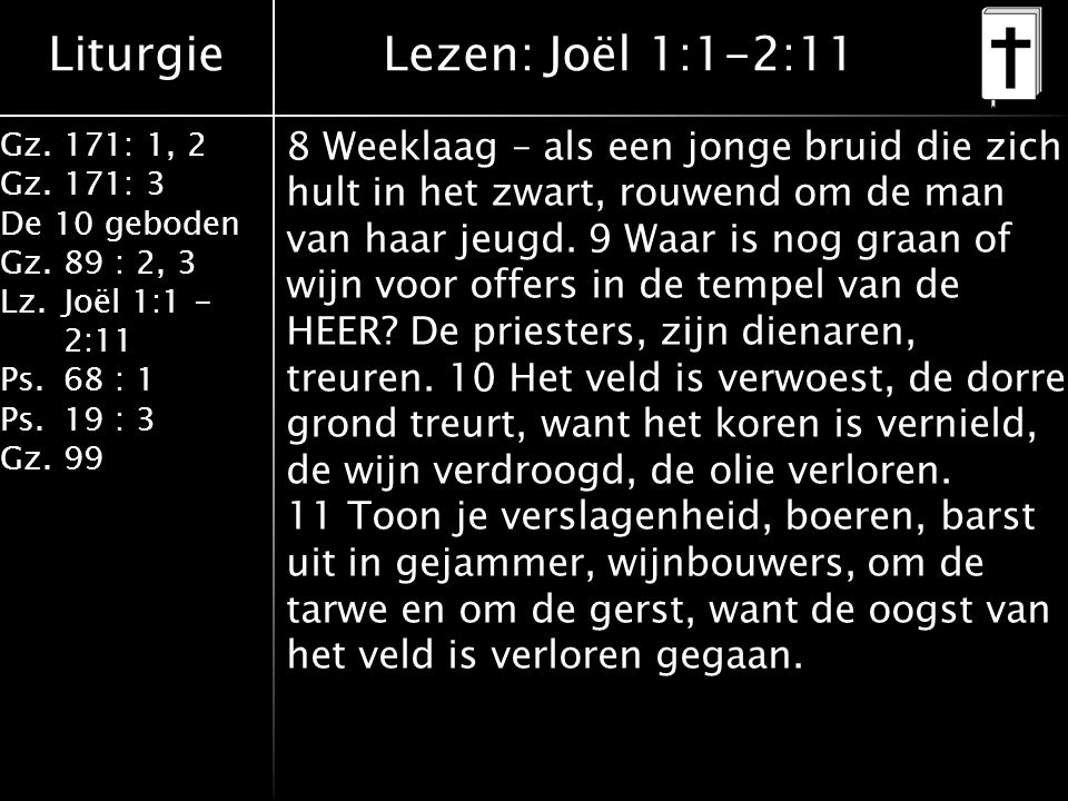 Liturgie Gz.171: 1, 2 Gz.171: 3 De 10 geboden Gz.89 : 2, 3 Lz.Joël 1:1 - 2:11 Ps.68 : 1 Ps.19 : 3 Gz.99 8 Weeklaag – als een jonge bruid die zich hult in het zwart, rouwend om de man van haar jeugd.
