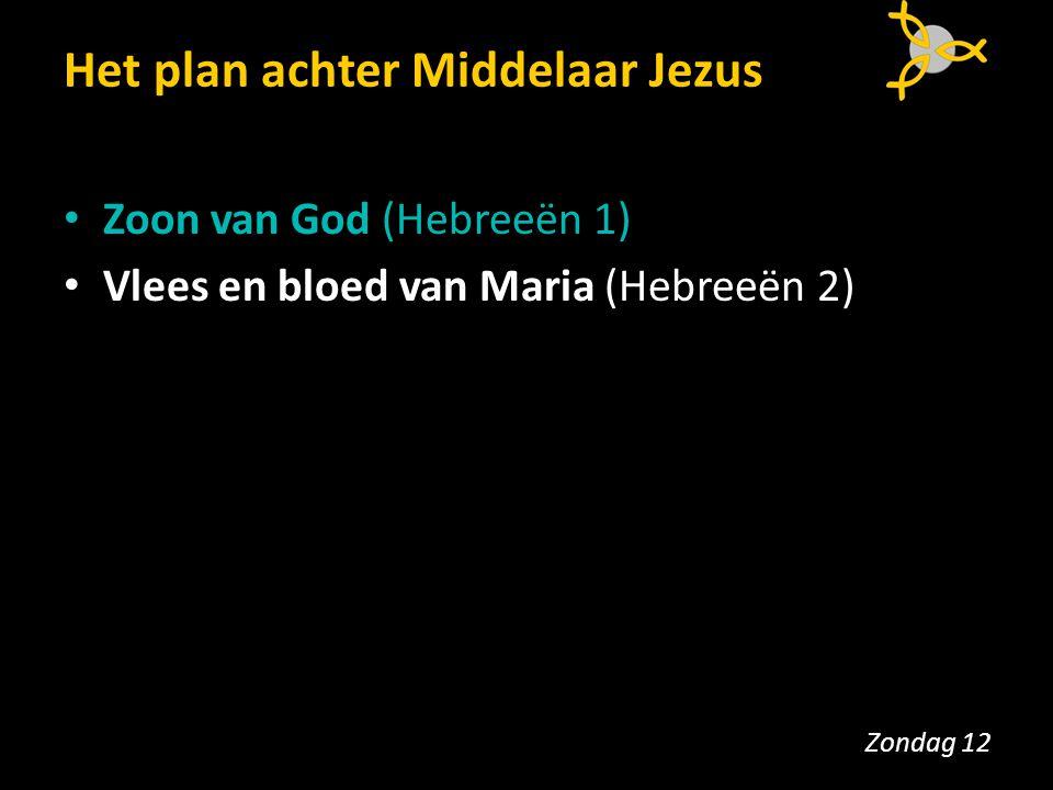 Het plan achter Middelaar Jezus Zoon van God (Hebreeën 1) Vlees en bloed van Maria (Hebreeën 2) Zondag 12