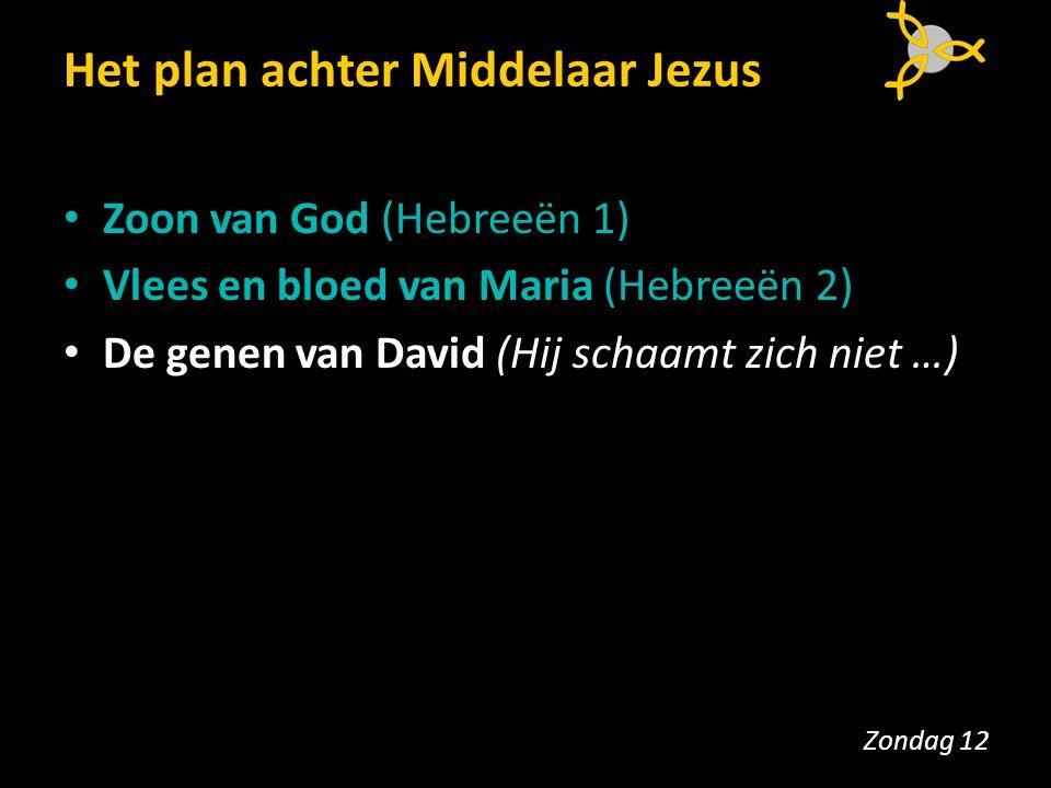 Het plan achter Middelaar Jezus Zoon van God (Hebreeën 1) Vlees en bloed van Maria (Hebreeën 2) De genen van David (Hij schaamt zich niet …) Zondag 12