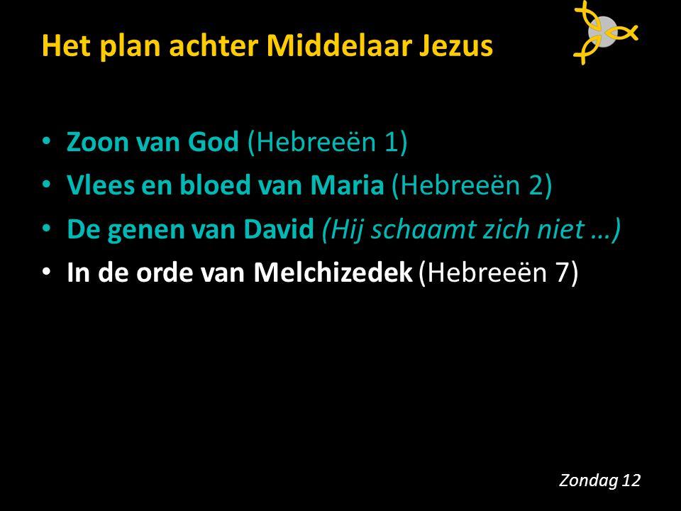 Het plan achter Middelaar Jezus Zoon van God (Hebreeën 1) Vlees en bloed van Maria (Hebreeën 2) De genen van David (Hij schaamt zich niet …) In de ord