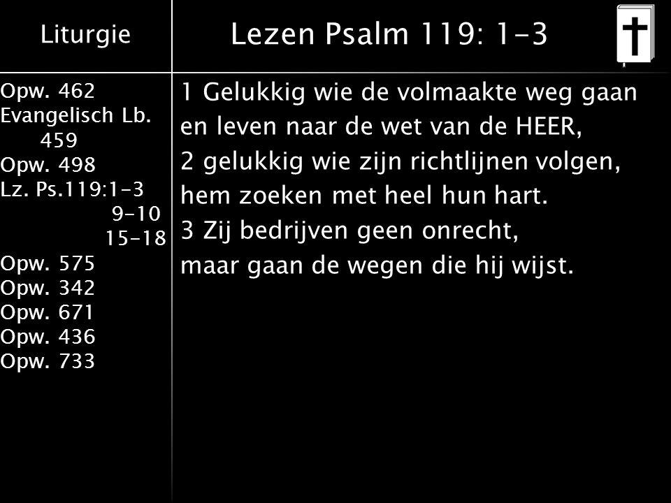 Liturgie Opw. 462 Evangelisch Lb. 459 Opw. 498 Lz. Ps.119:1-3 9-10 15-18 Opw. 575 Opw. 342 Opw. 671 Opw. 436 Opw. 733 1 Gelukkig wie de volmaakte weg
