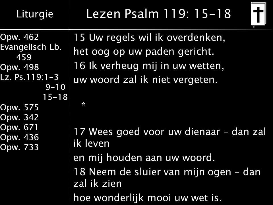 Liturgie Opw. 462 Evangelisch Lb. 459 Opw. 498 Lz. Ps.119:1-3 9-10 15-18 Opw. 575 Opw. 342 Opw. 671 Opw. 436 Opw. 733 15 Uw regels wil ik overdenken,
