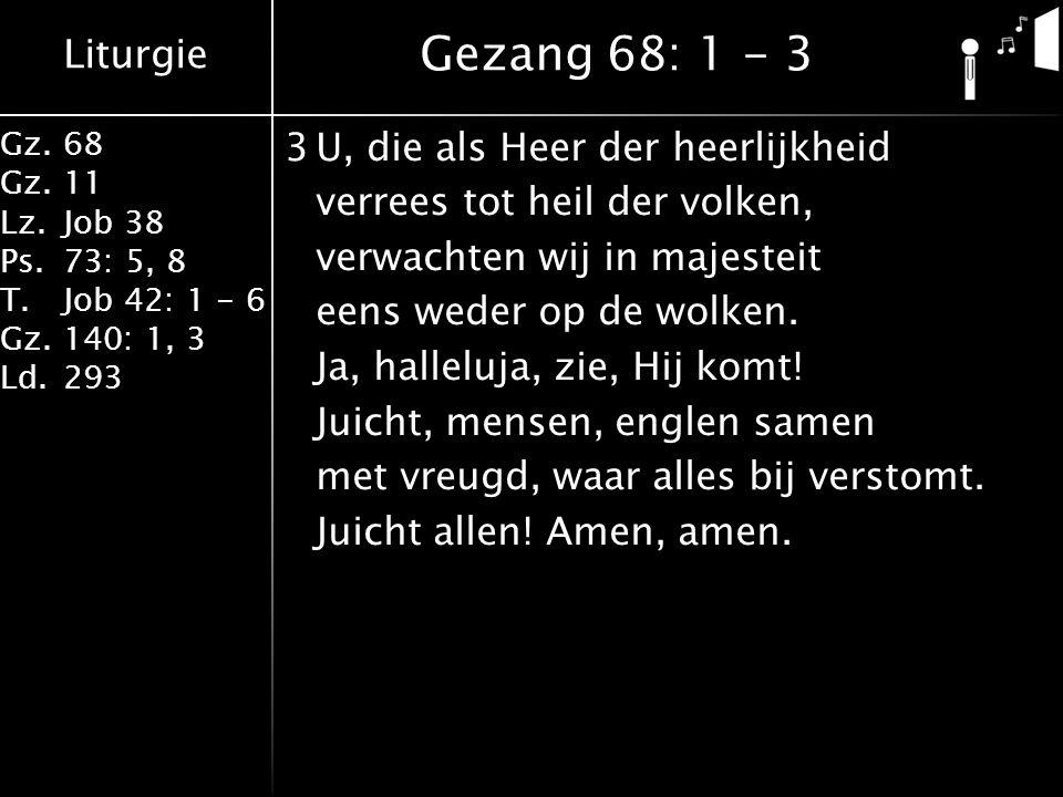 Liturgie Gz.68 Gz.11 Lz.Job 38 Ps.73: 5, 8 T.Job 42: 1 - 6 Gz.140: 1, 3 Ld.293 3U, die als Heer der heerlijkheid verrees tot heil der volken, verwachten wij in majesteit eens weder op de wolken.