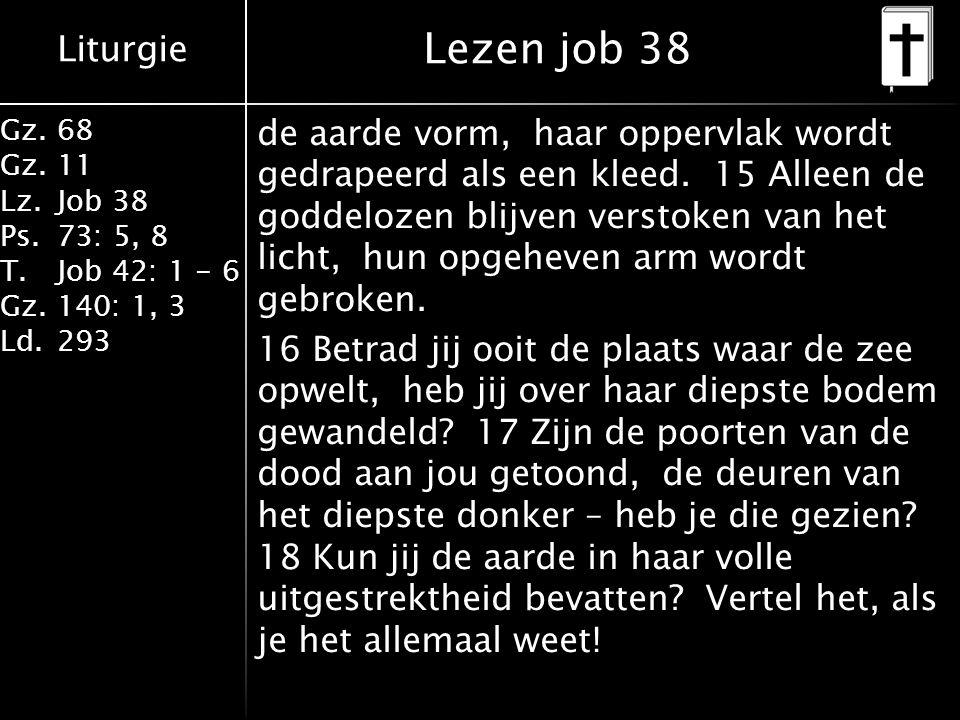 Liturgie Gz.68 Gz.11 Lz.Job 38 Ps.73: 5, 8 T.Job 42: 1 - 6 Gz.140: 1, 3 Ld.293 de aarde vorm, haar oppervlak wordt gedrapeerd als een kleed.