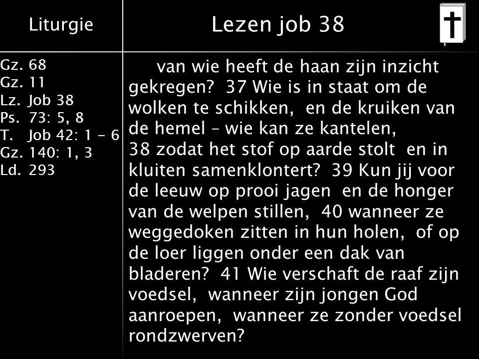 Liturgie Gz.68 Gz.11 Lz.Job 38 Ps.73: 5, 8 T.Job 42: 1 - 6 Gz.140: 1, 3 Ld.293 van wie heeft de haan zijn inzicht gekregen? 37 Wie is in staat om de w