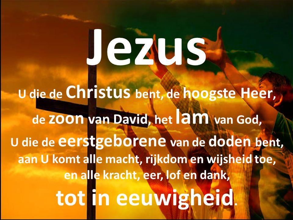 Jezus U die de Christus bent, de hoogste Heer, de zoon van David, het lam van God, U die de eerstgeborene van de doden bent, aan U komt alle macht, rijkdom en wijsheid toe, en alle kracht, eer, lof en dank, tot in eeuwigheid.