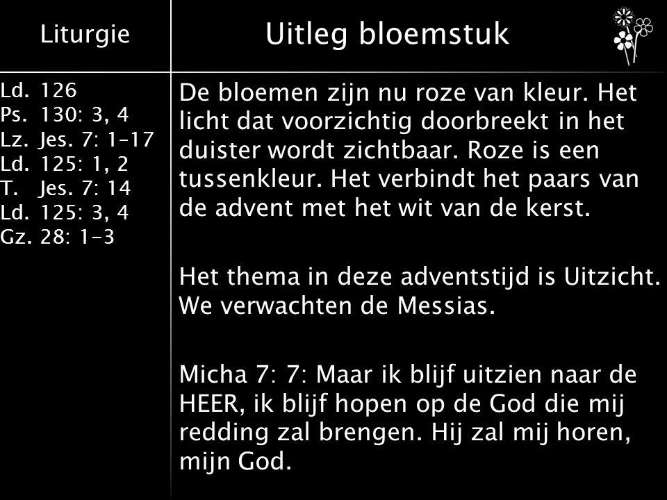 Liturgie Ld.126 Ps.130: 3, 4 Lz.Jes. 7: 1–17 Ld.125: 1, 2 T.Jes. 7: 14 Ld.125: 3, 4 Gz.28: 1-3 Uitleg bloemstuk De bloemen zijn nu roze van kleur. Het