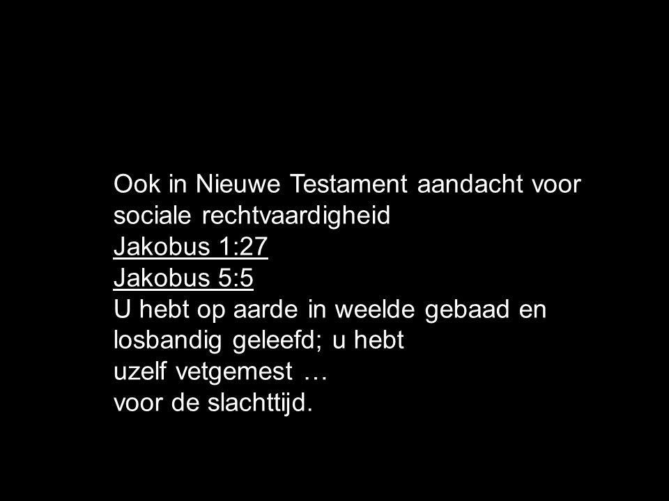 Ook in Nieuwe Testament aandacht voor sociale rechtvaardigheid Jakobus 1:27 Jakobus 5:5 U hebt op aarde in weelde gebaad en losbandig geleefd; u hebt uzelf vetgemest … voor de slachttijd.