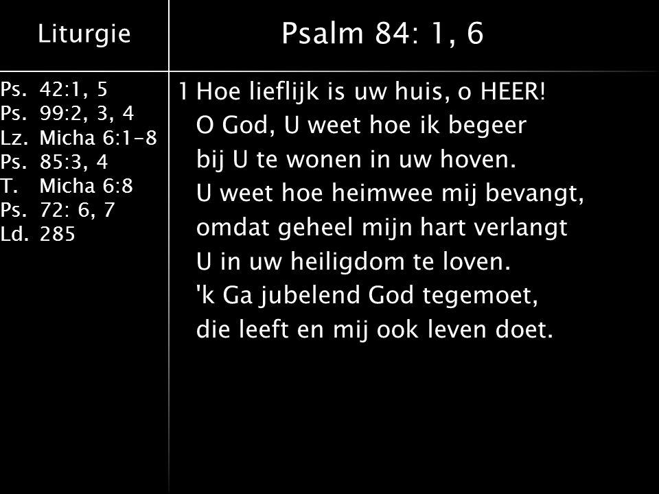 Ook in Nieuwe Testament aandacht voor sociale rechtvaardigheid Vanuit de verbondenheid met Christus Door Hem en zijn Geest zijn wij aan ons oude dikke ik gestorven.