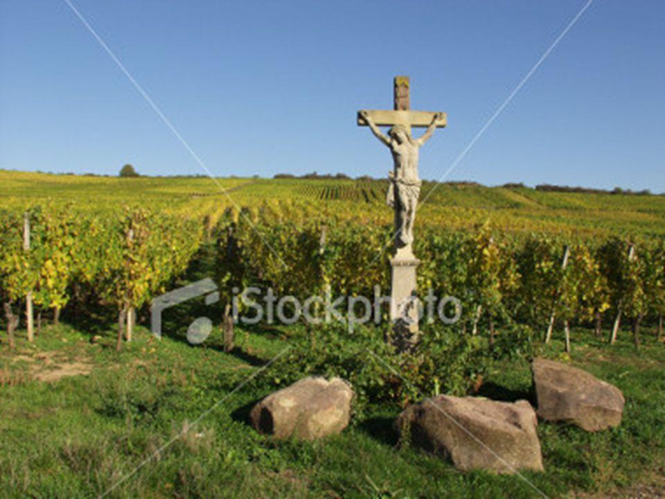 Liturgie Ps.65 : 1, 3, 5 Lz. Deut. 26: 1-13 Gz.132 : 1 – 6 Ps. 134 : 1, 2, 3 Gz. 137