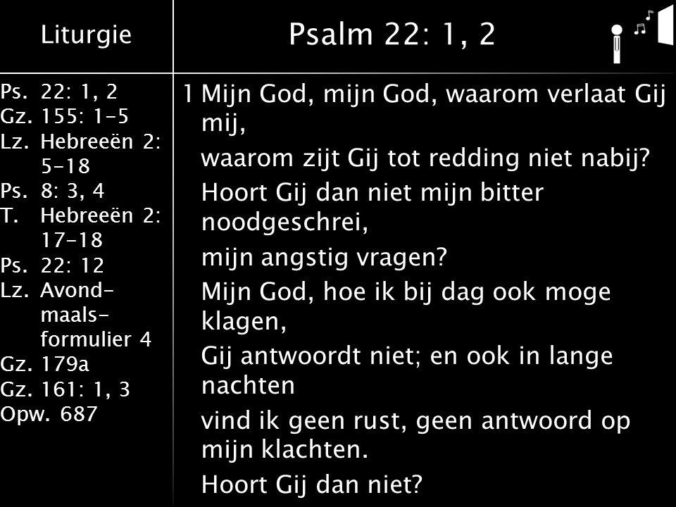 Liturgie Ps.22: 1, 2 Gz.155: 1-5 Lz.Hebreeën 2: 5-18 Ps.8: 3, 4 T.Hebreeën 2: 17-18 Ps.22: 12 Lz.Avond- maals- formulier 4 Gz.179a Gz.161: 1, 3 Opw.687 1Mijn God, mijn God, waarom verlaat Gij mij, waarom zijt Gij tot redding niet nabij.