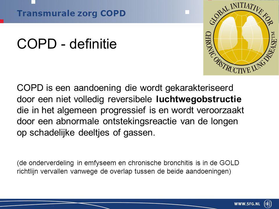 Transmurale zorg COPD COPD – classificatie: vele parameters Jones and Augusti, Eur Respir J 2006