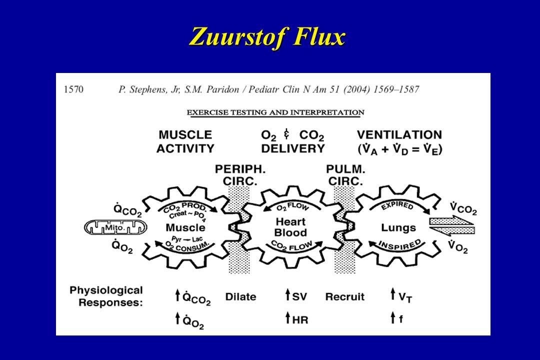Zuurstof Flux