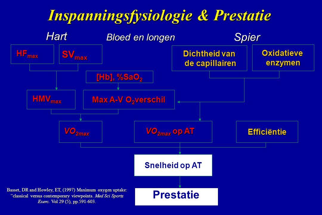Dichtheid van de capillairen de capillairen Efficiëntie Prestatie HF max SV max HMV max Snelheid op AT VO 2max op AT Oxidatieveenzymen [Hb], %SaO 2 Ma
