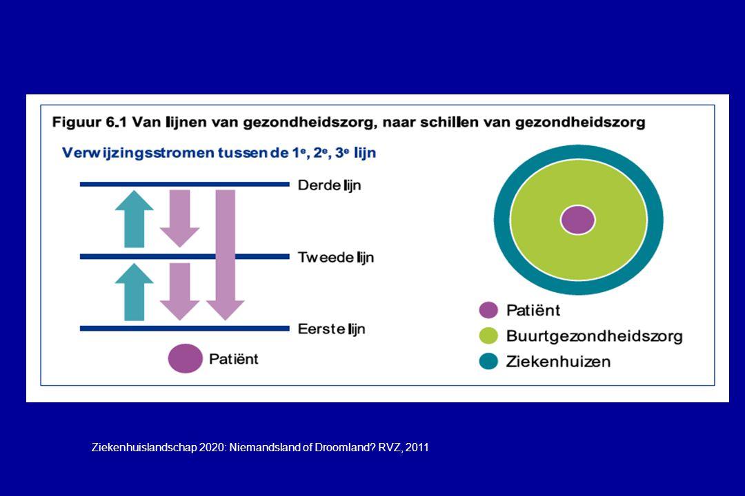 Ziekenhuislandschap 2020: Niemandsland of Droomland? RVZ, 2011
