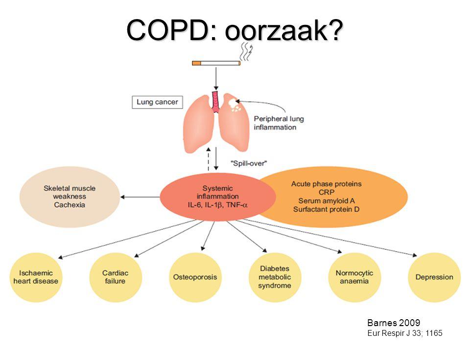 COPD: oorzaak? Barnes 2009 Eur Respir J 33; 1165