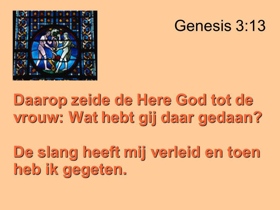 Genesis 3:13 Daarop zeide de Here God tot de vrouw: Wat hebt gij daar gedaan.