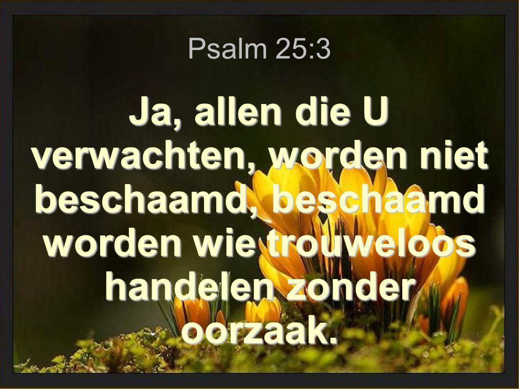 Psalm 25:3 Ja, allen die U verwachten, worden niet beschaamd, beschaamd worden wie trouweloos handelen zonder oorzaak.