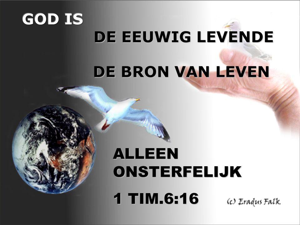 DE BRON VAN LEVEN ALLEEN ONSTERFELIJK 1 TIM.6:16