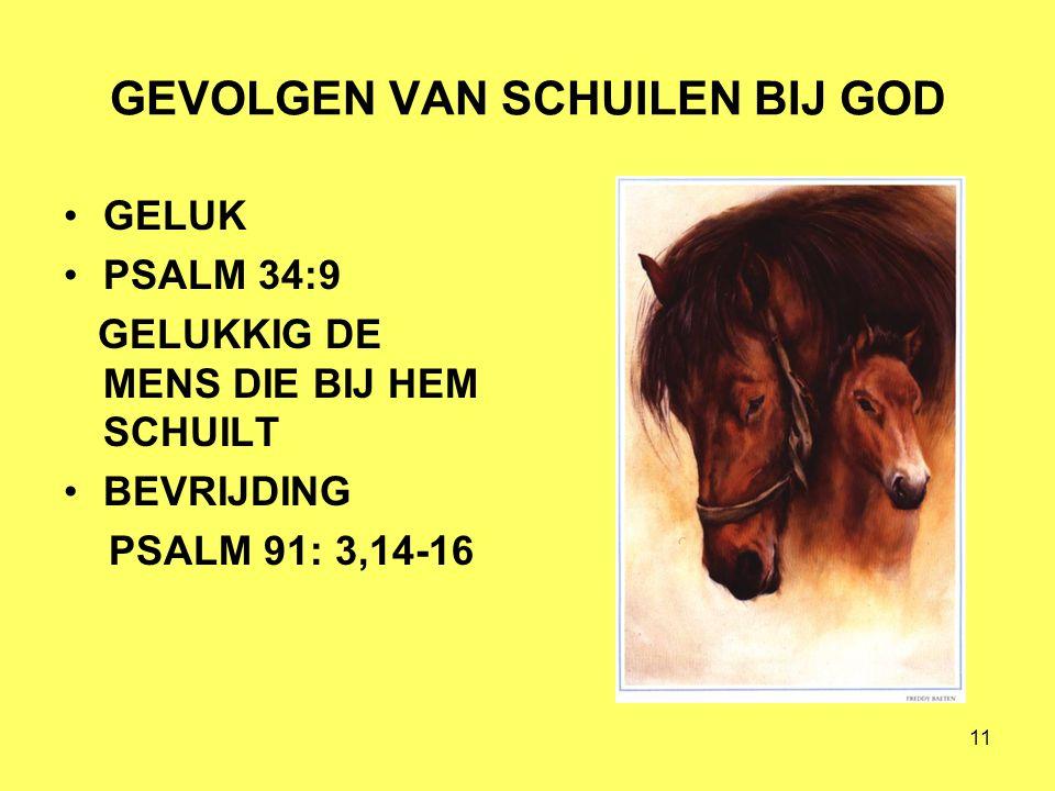 11 GEVOLGEN VAN SCHUILEN BIJ GOD GELUK PSALM 34:9 GELUKKIG DE MENS DIE BIJ HEM SCHUILT BEVRIJDING PSALM 91: 3,14-16