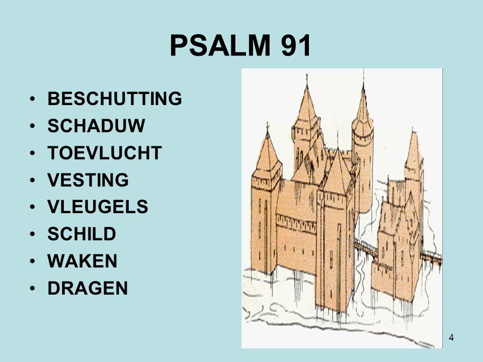 4 PSALM 91 BESCHUTTING SCHADUW TOEVLUCHT VESTING VLEUGELS SCHILD WAKEN DRAGEN