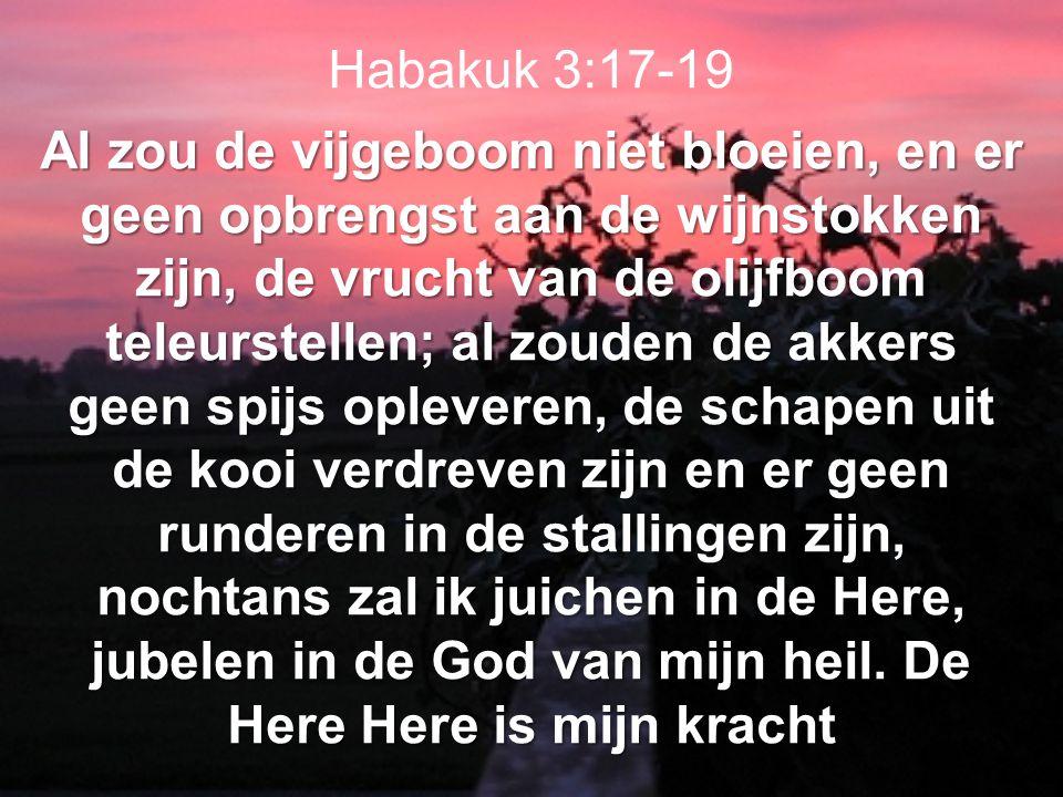 Habakuk 3:17-19 Al zou de vijgeboom niet bloeien, en er geen opbrengst aan de wijnstokken zijn, de vrucht van de olijfboom teleurstellen; al zouden de