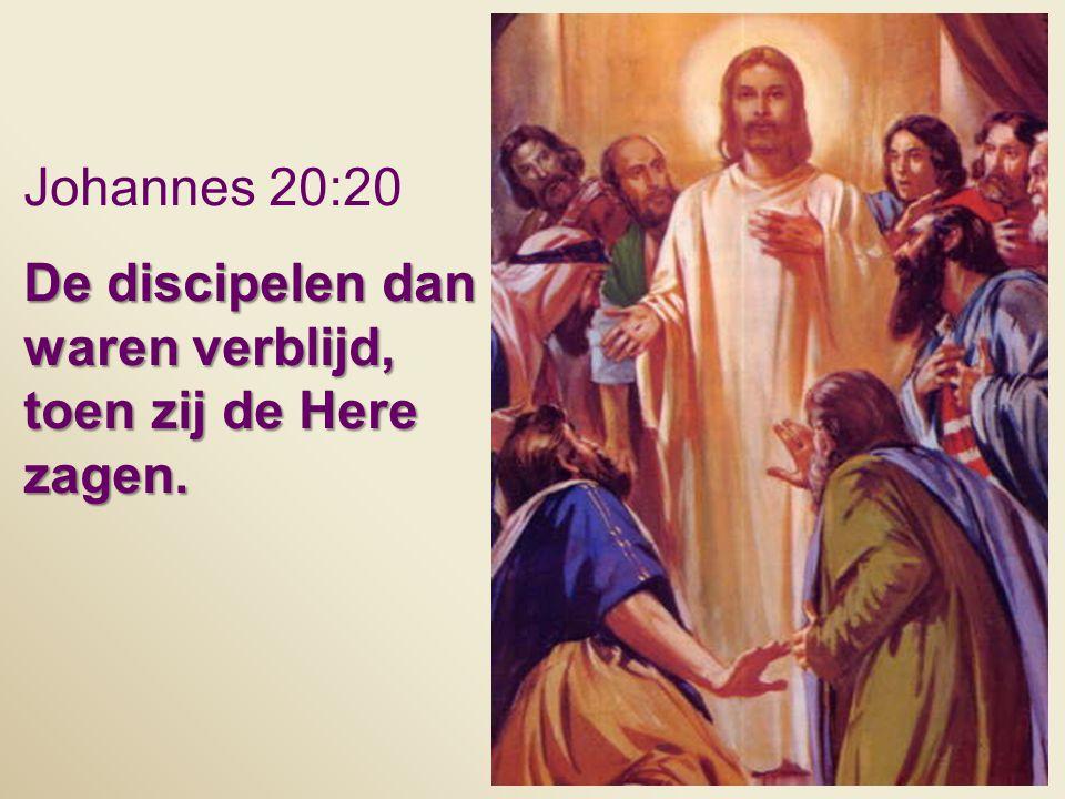 Johannes 20:20 De discipelen dan waren verblijd, toen zij de Here zagen.