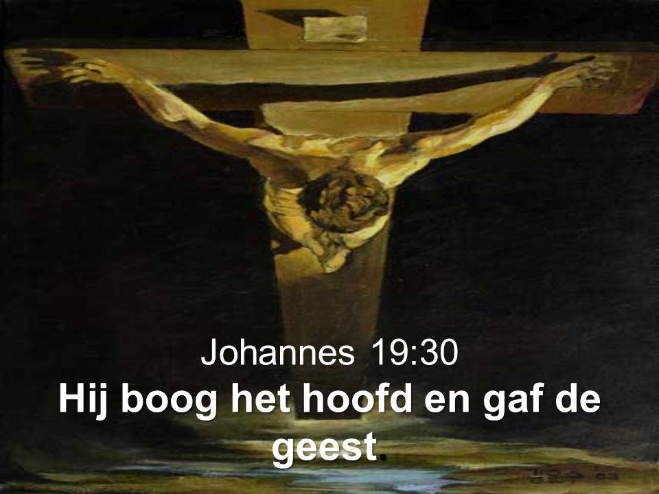 Johannes 19:30 Hij boog het hoofd en gaf de geest.