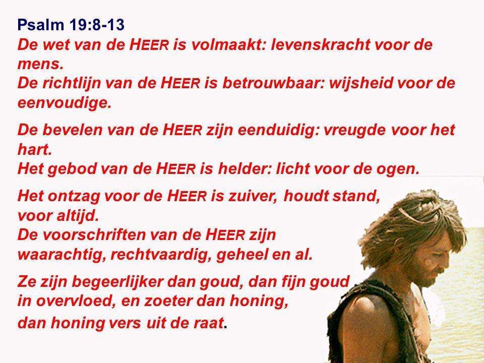 Psalm 19:8-13 De wet van de H EER is volmaakt: levenskracht voor de mens.