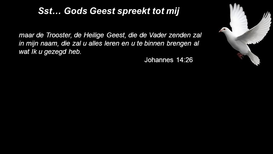maar de Trooster, de Heilige Geest, die de Vader zenden zal in mijn naam, die zal u alles leren en u te binnen brengen al wat Ik u gezegd heb.