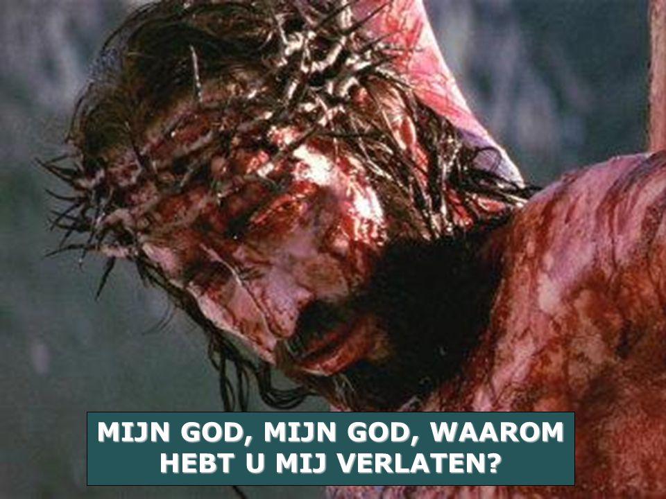 MIJN GOD, MIJN GOD, WAAROM HEBT U MIJ VERLATEN?